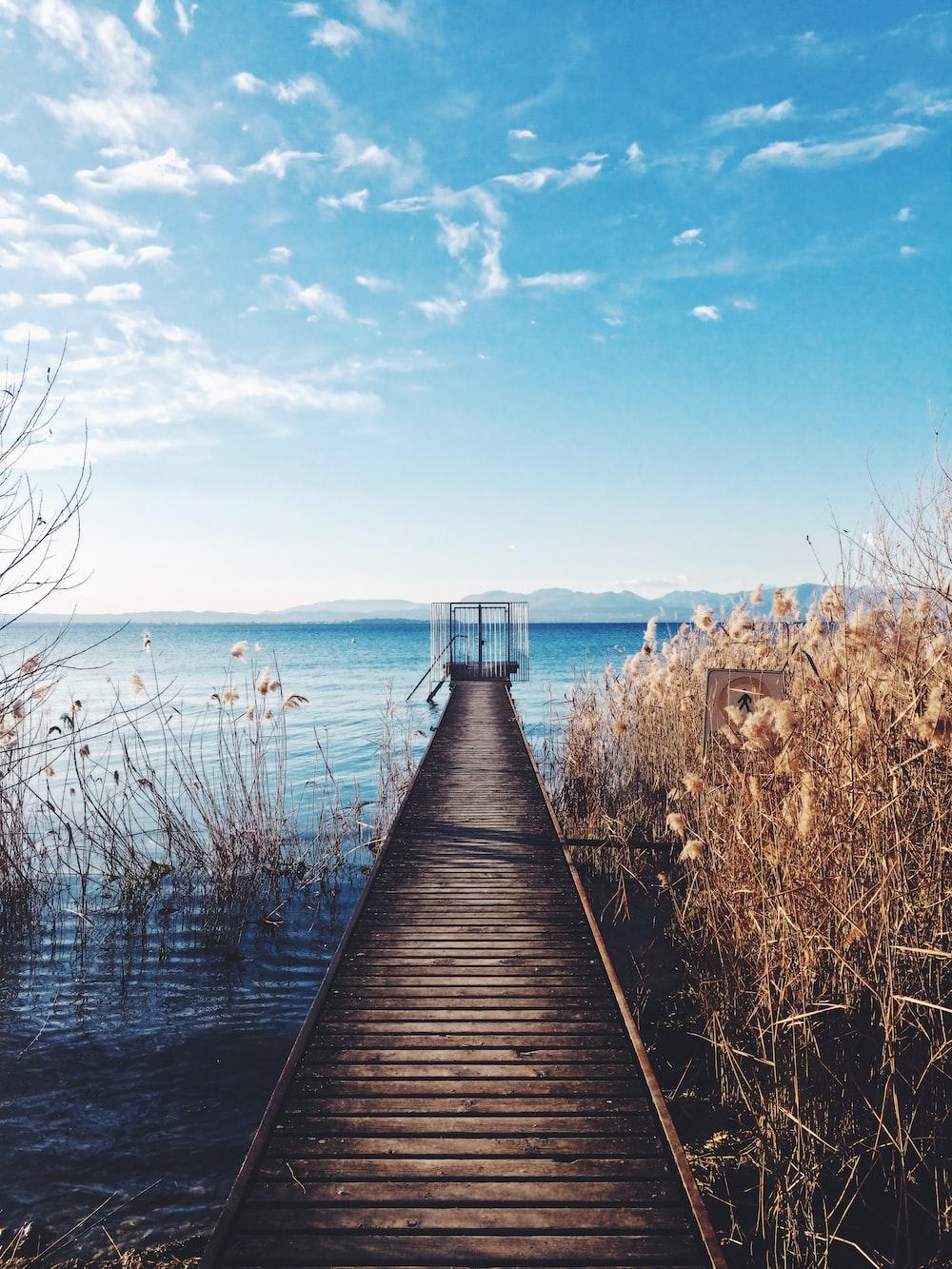 photo of brown wooden boardwalk nearby sea