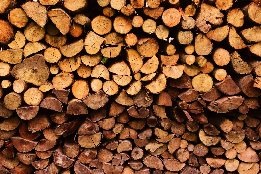 stack of firewood at daytime