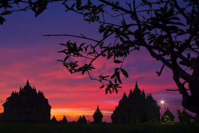 silhouette photo of trees indonesia zoom background