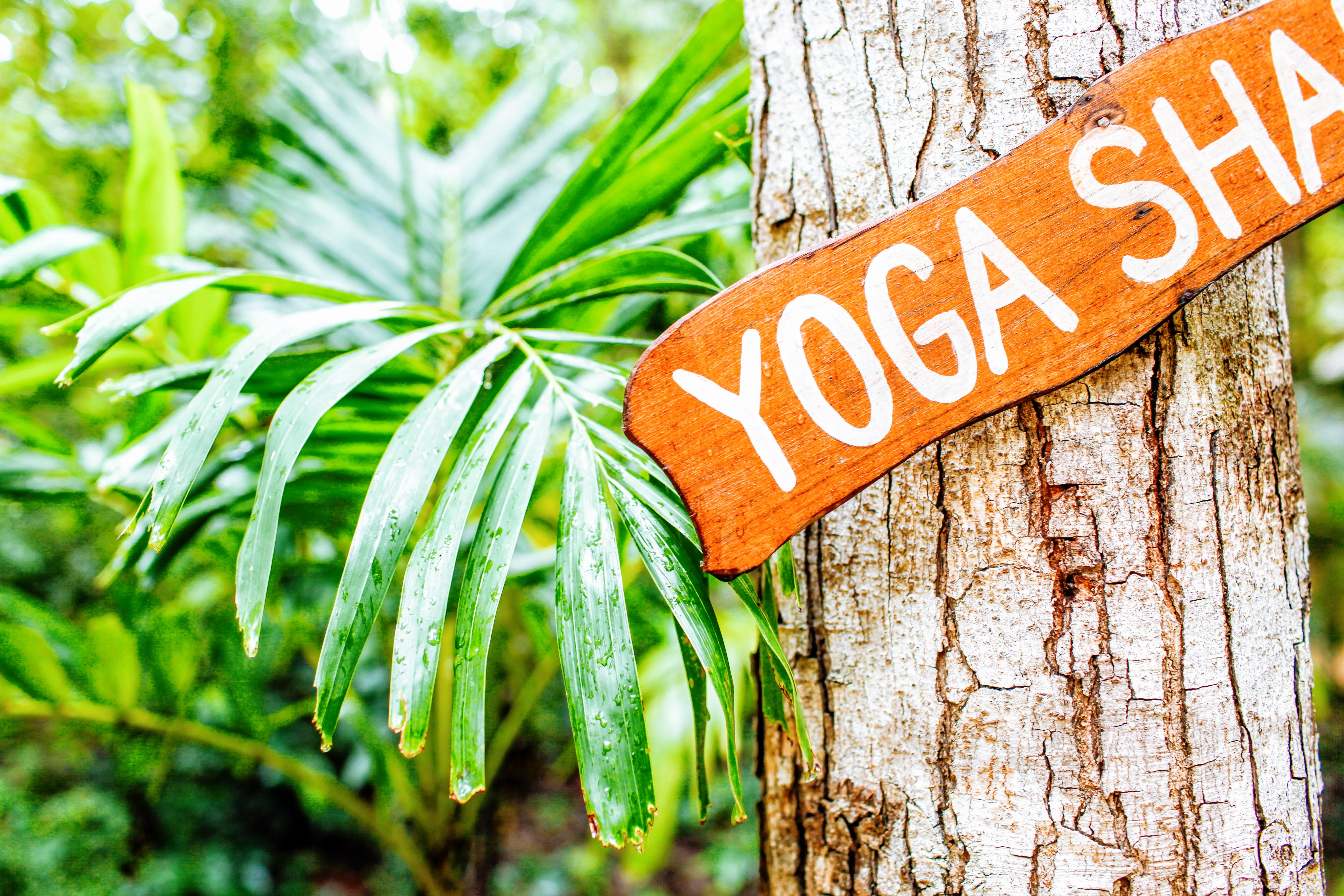 brown and white yoga hanging signboard
