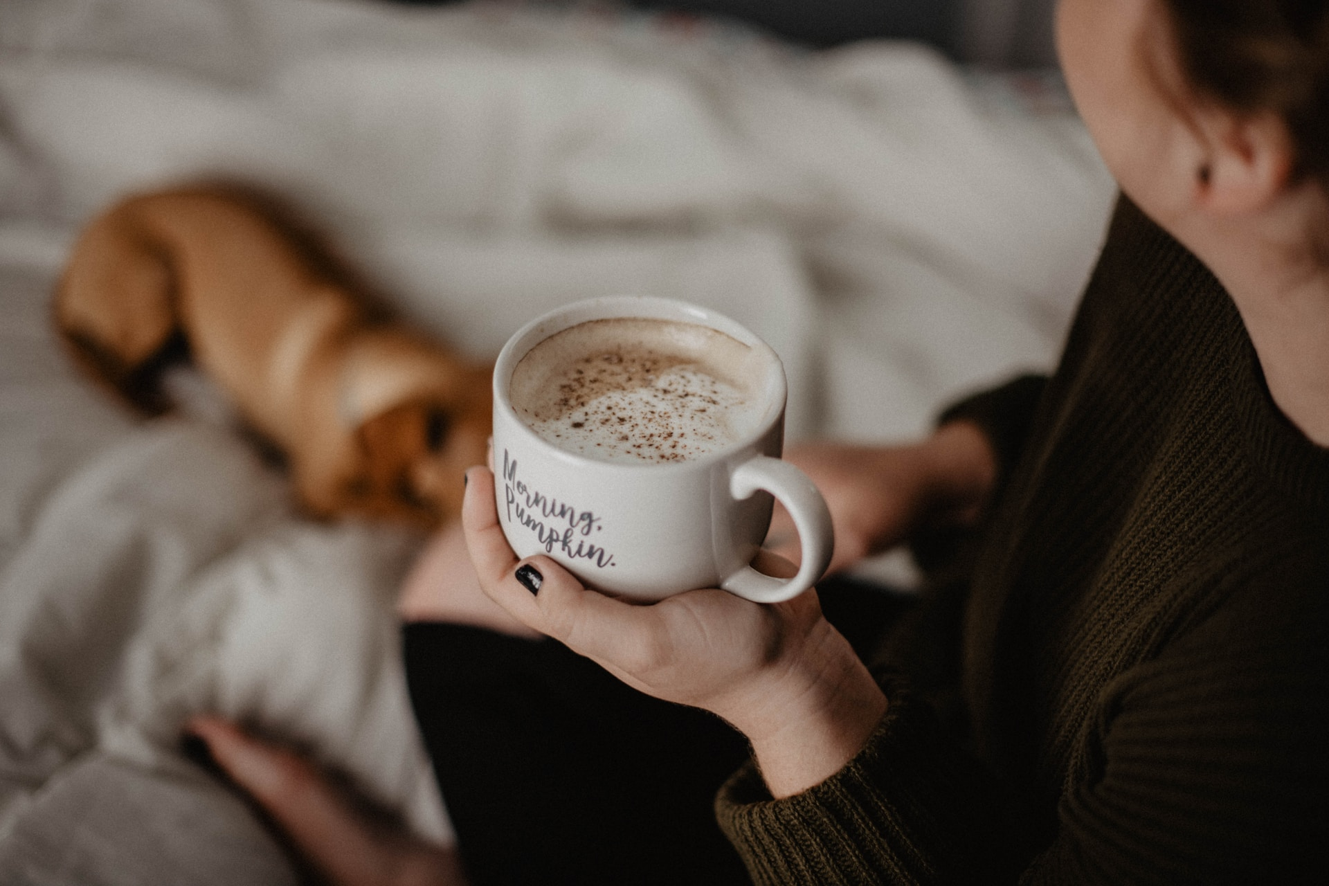 woman holding white ceramic teacup sitting on white blanket near short-coated tan dog