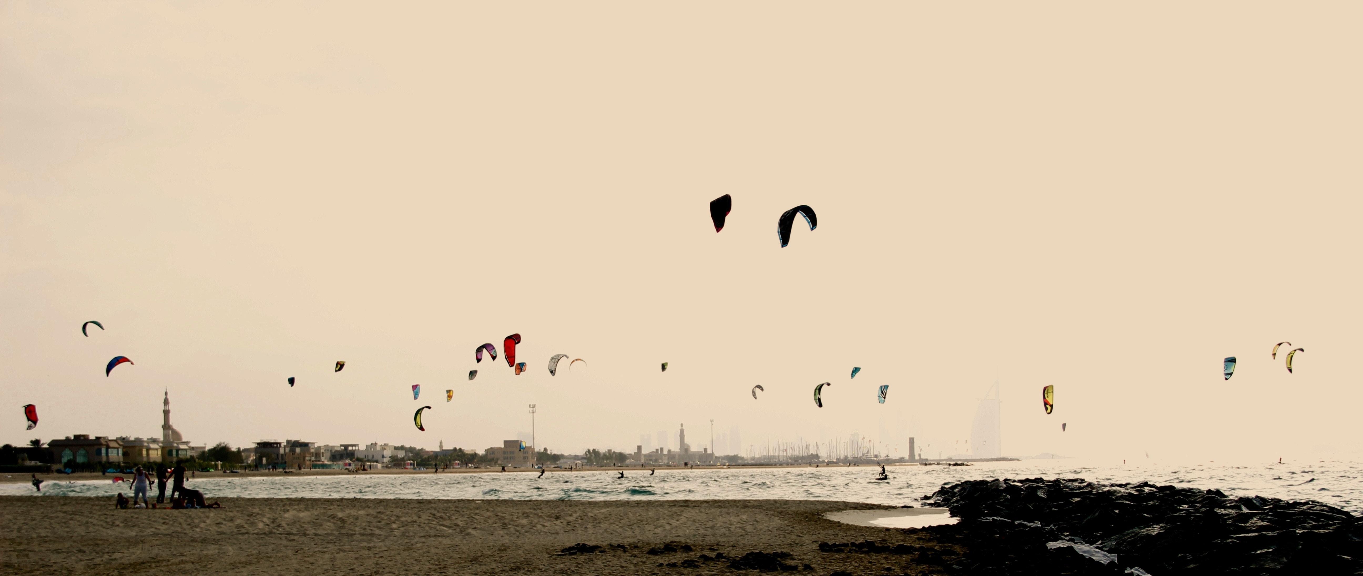 flock of flying birds long exposure photography
