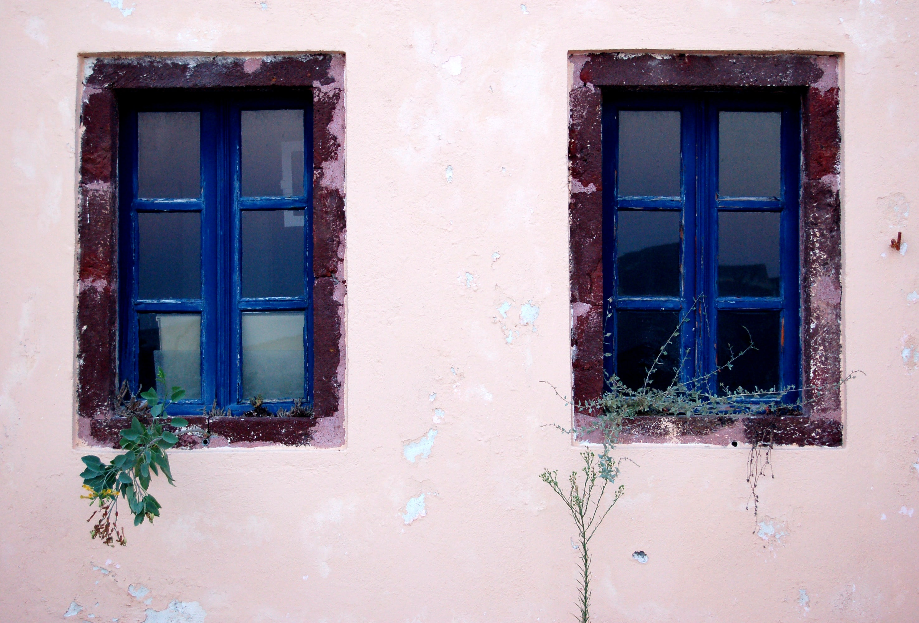 front view of blue windows