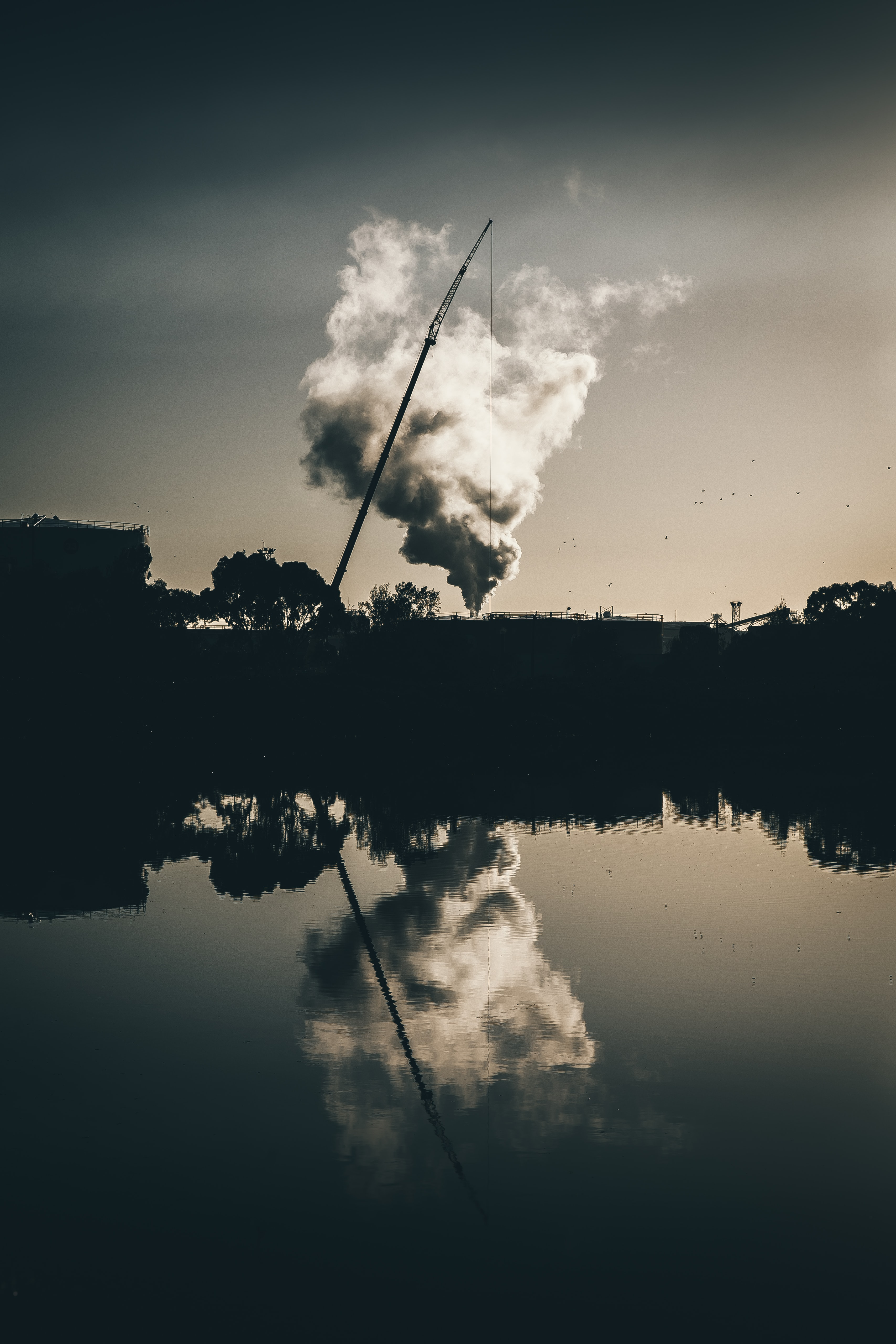 silhouette of crane and trees