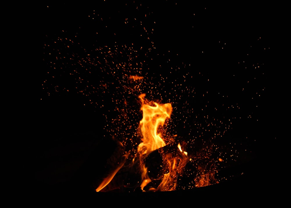 bonfire surrounded by embers