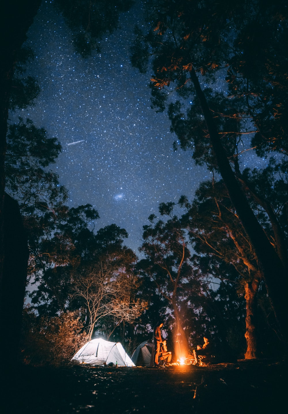 person sitting near bonfire surrounded by trees