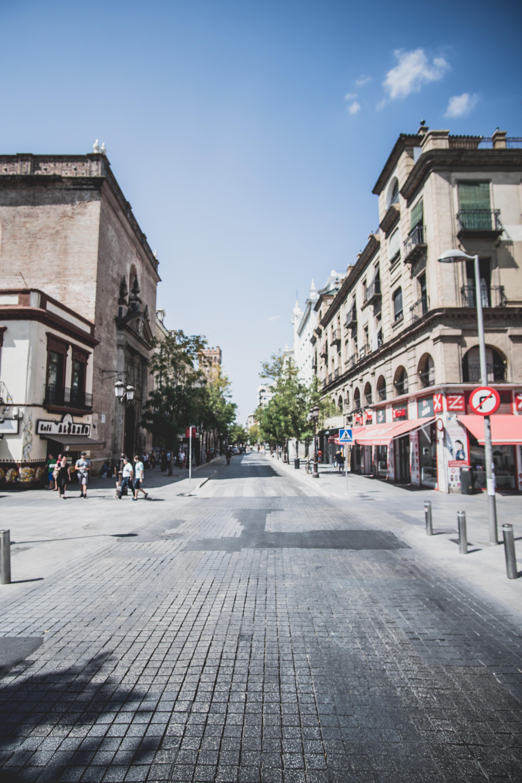 people beside the street