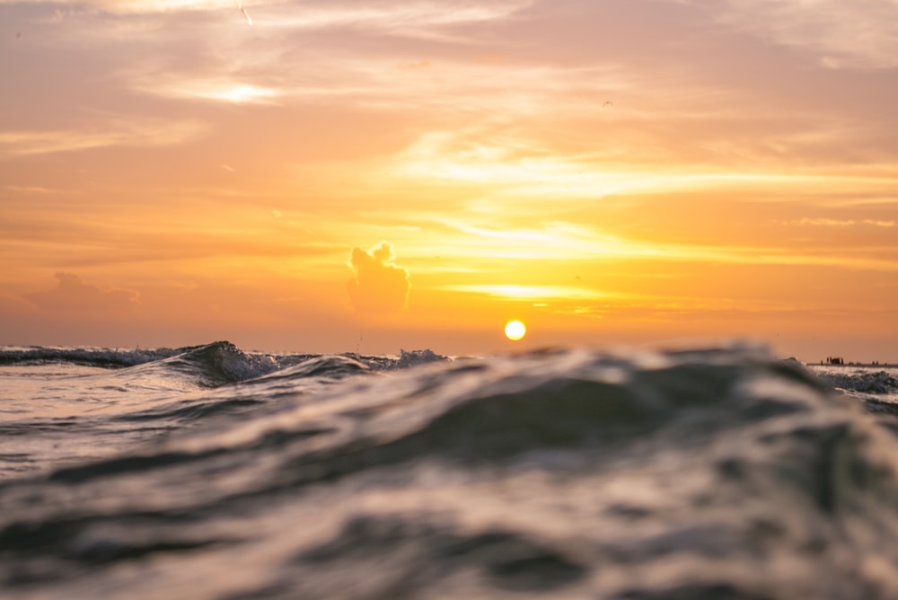 shallow focus photography of body of water during sunset