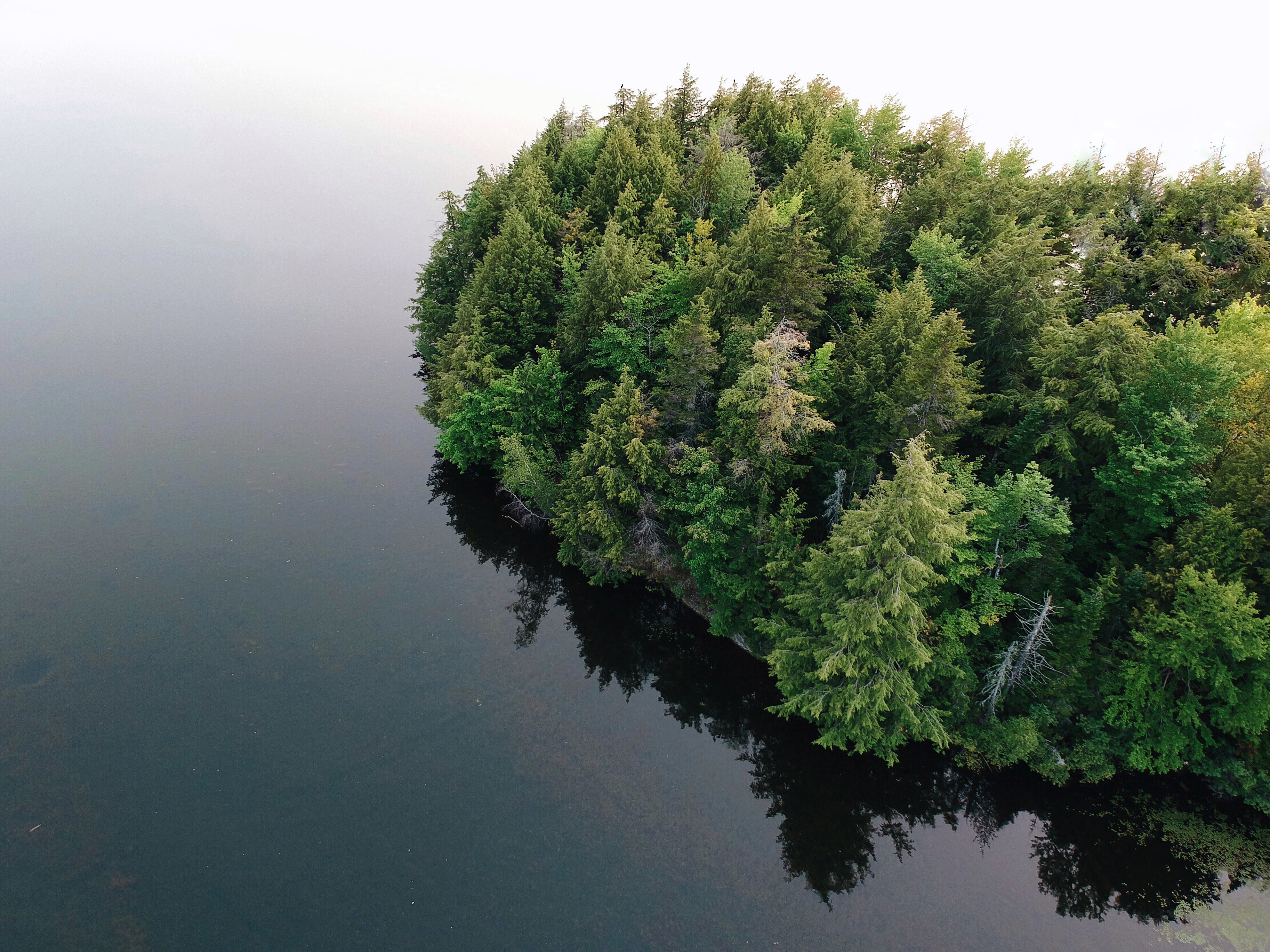 aerial photography of island surrounded by body of water