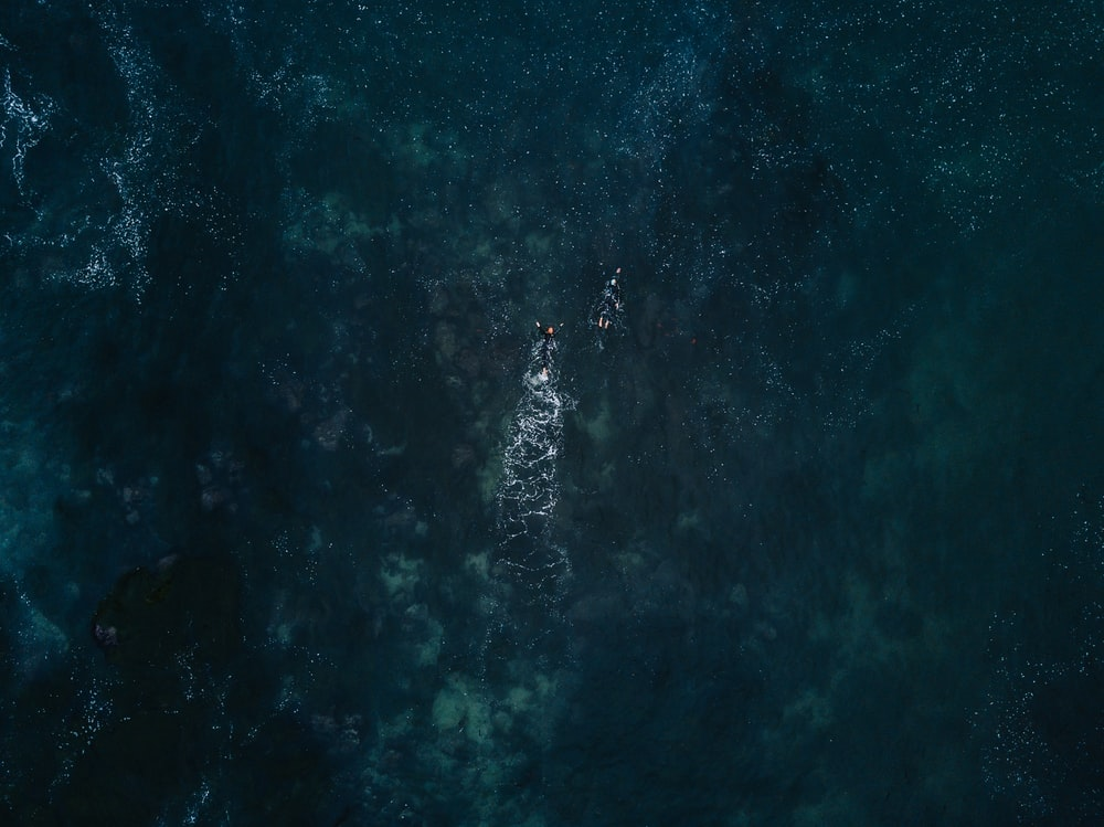 bird's eye photography of two person swimming in ocean