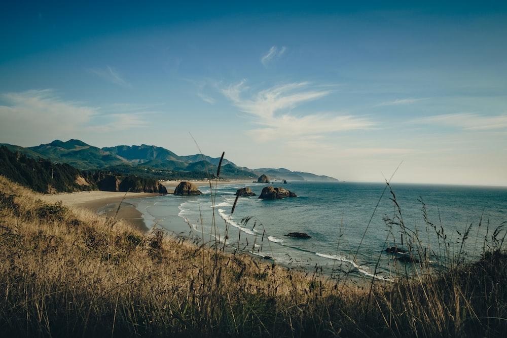 landscape photo of gray sand beach