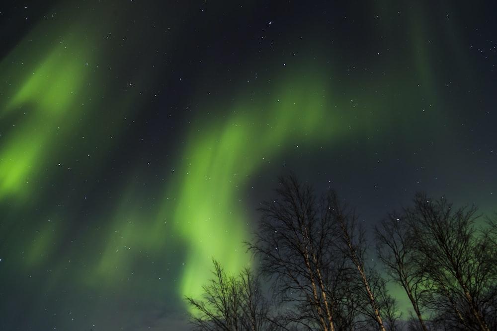 aurora boreallis