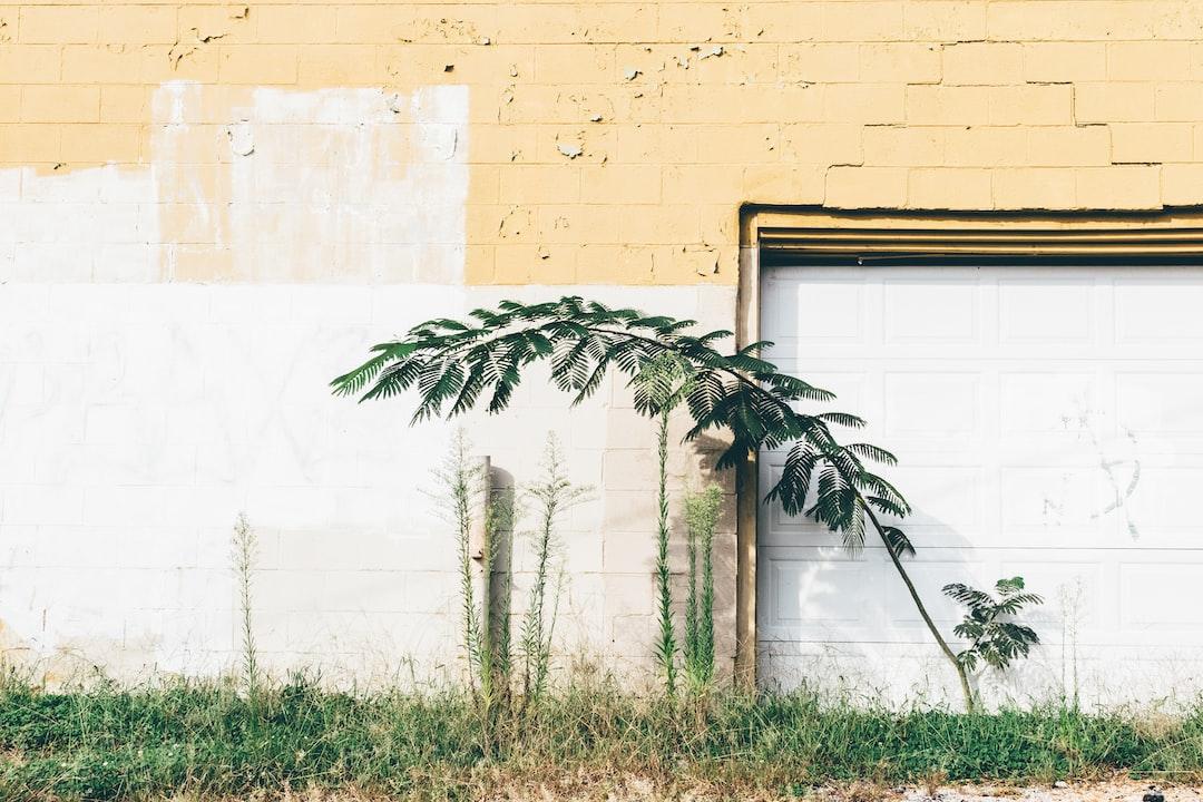 Plant Topographics