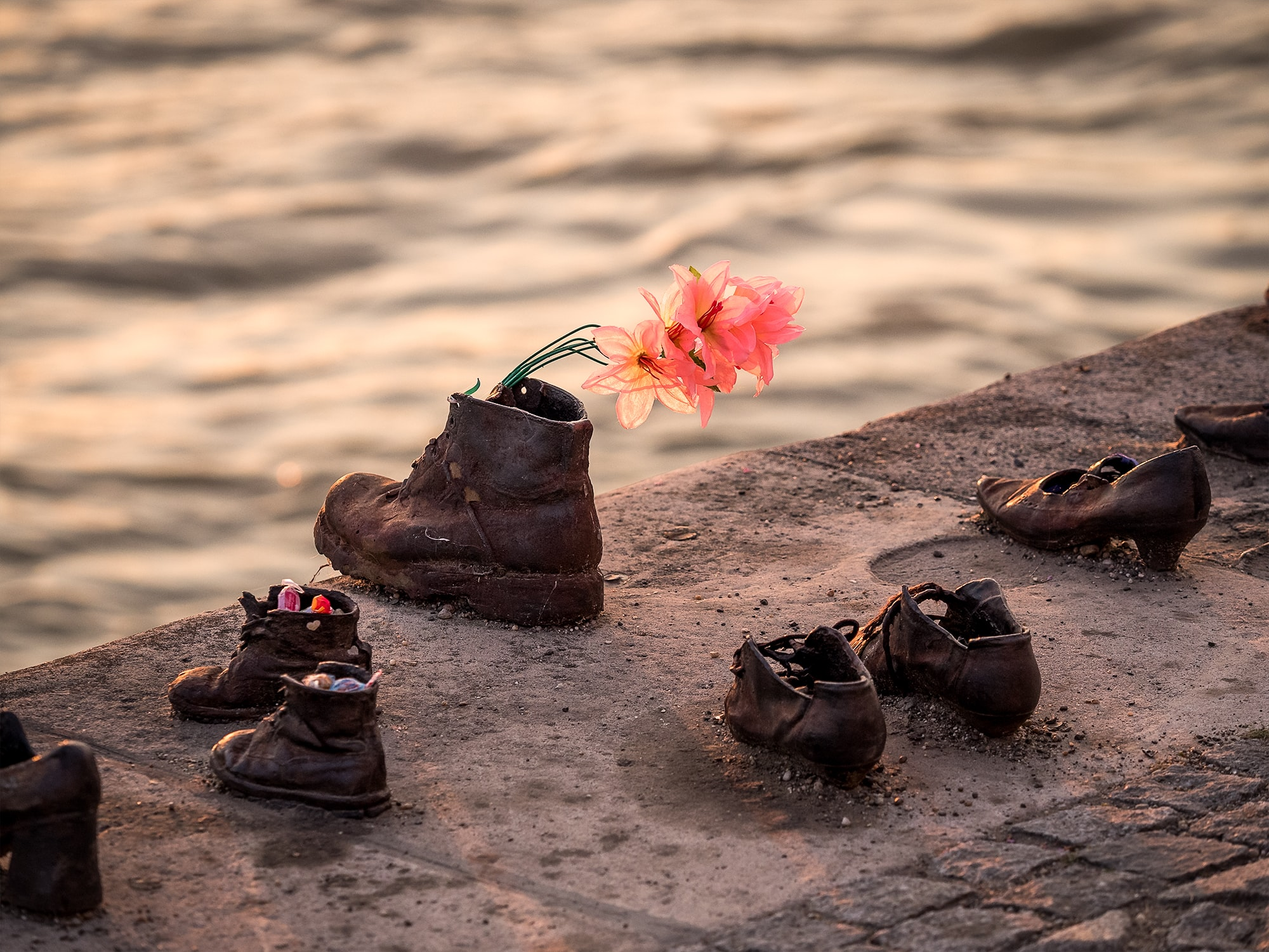 assorted brown leather footwear beside body of water