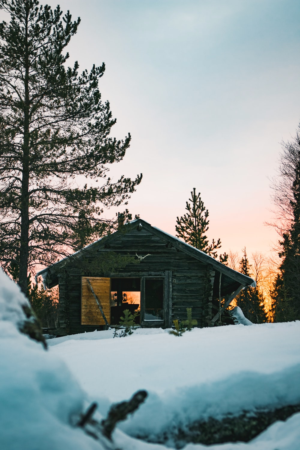 silhouette photography of house near pine tree covered with snows
