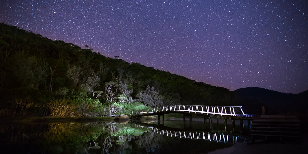 brown wooden arc bridge with white lights under stary skies