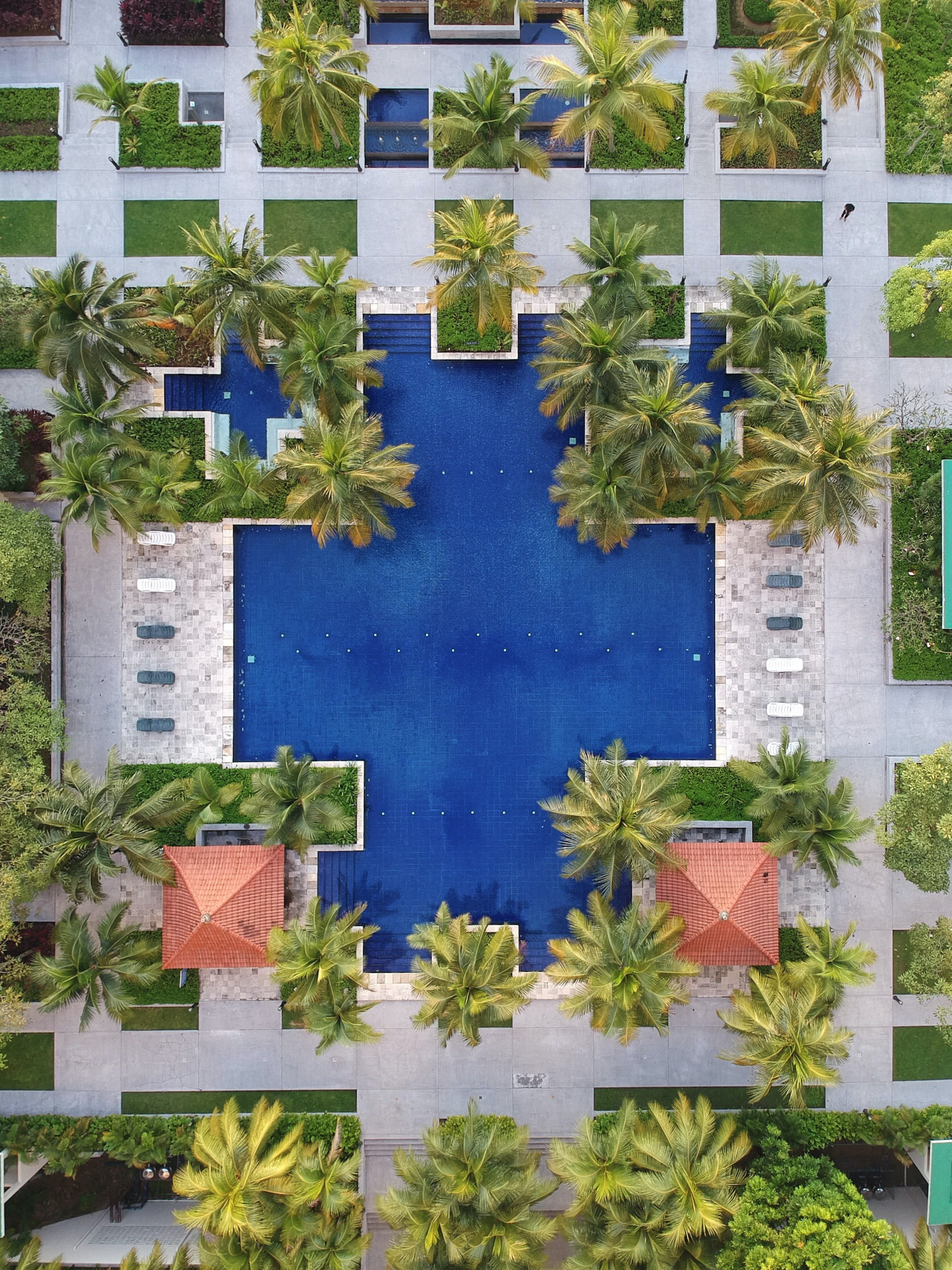 aerial view of pool surrounded by palm trees