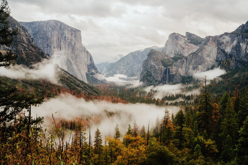 aerial photography of foggy forest overlooking mountain range