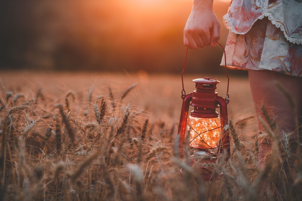 closeup photography of woman wearing floral skirt holding red gas lantern at brown grass field