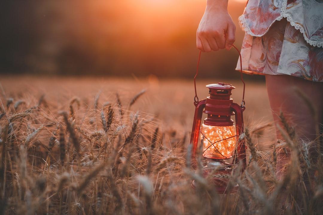Fireflies in a lampion