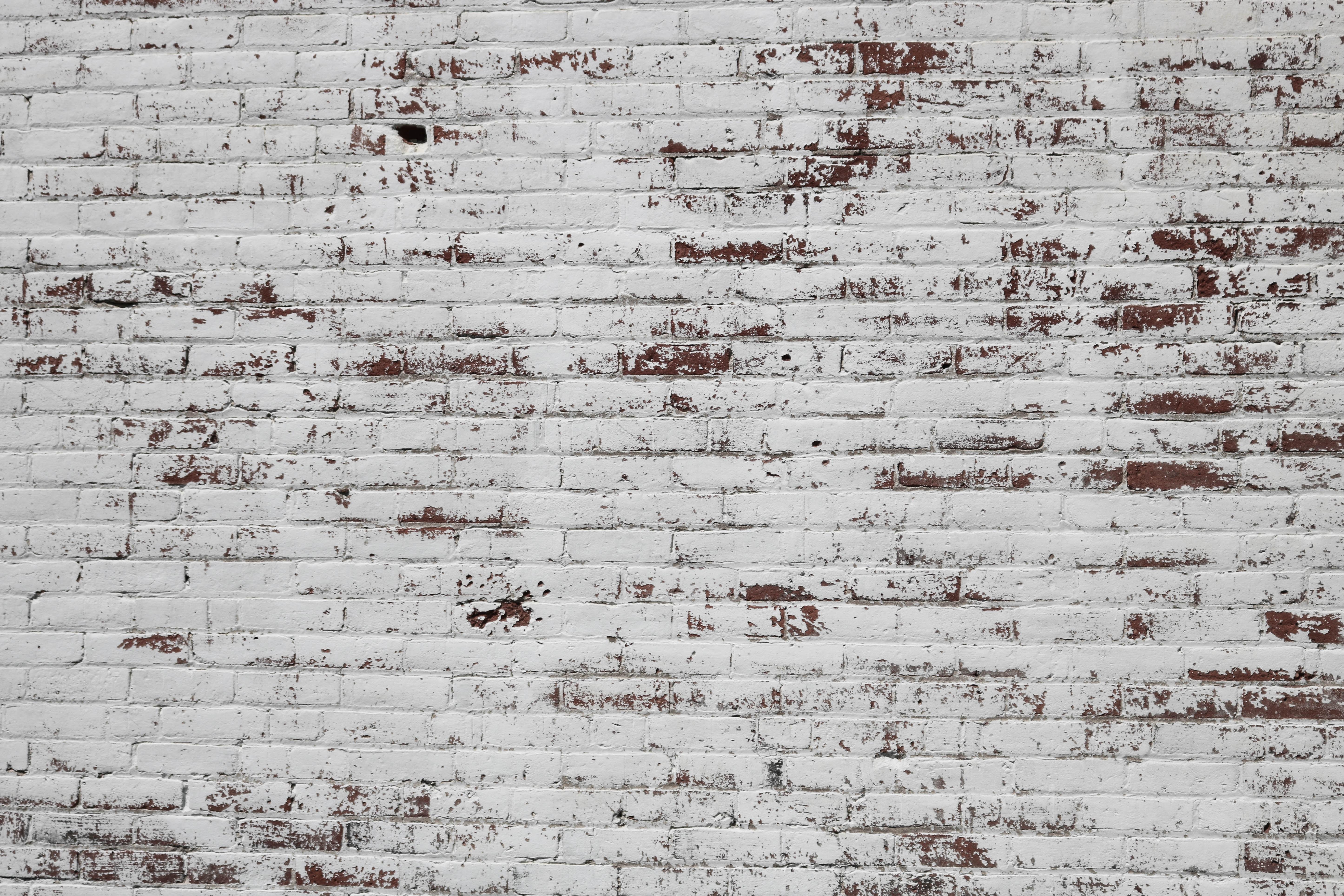 white and brown concrete brick wall