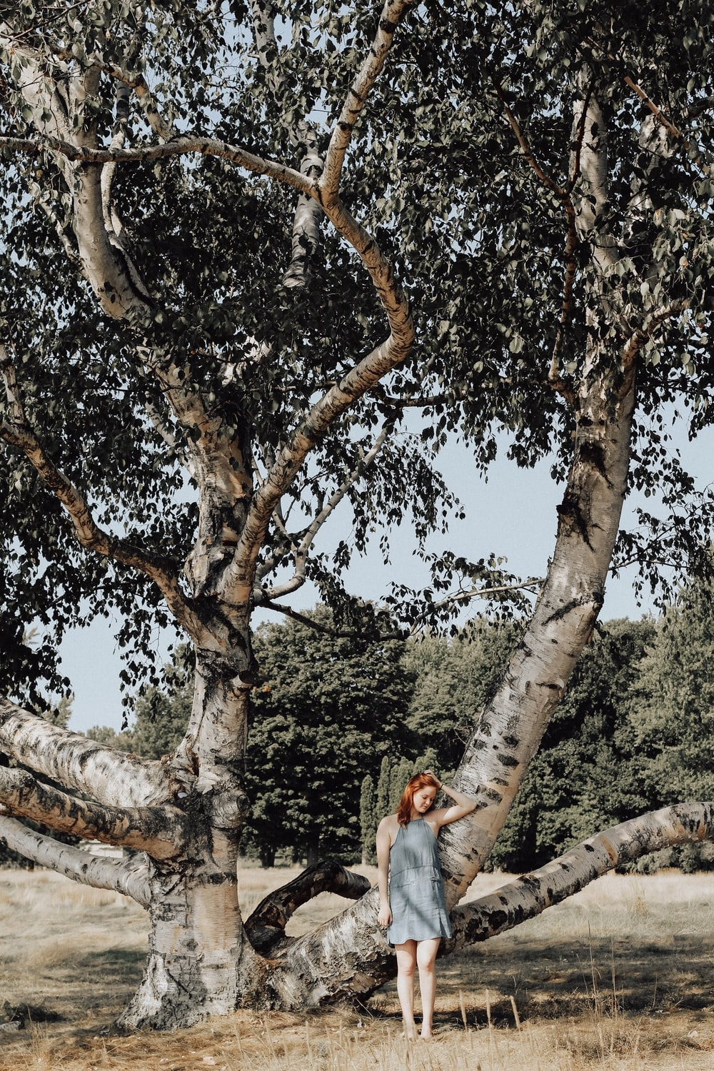 woman standing under tree during daytime