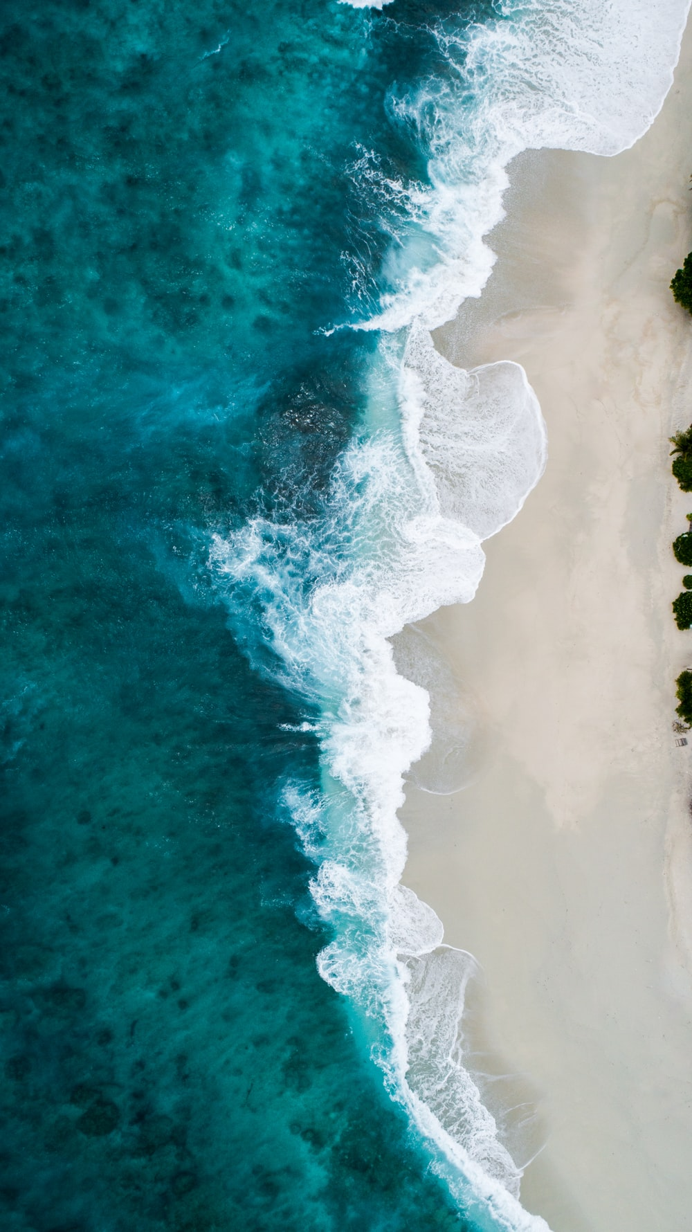 aerial photography of large body of water and shoreline
