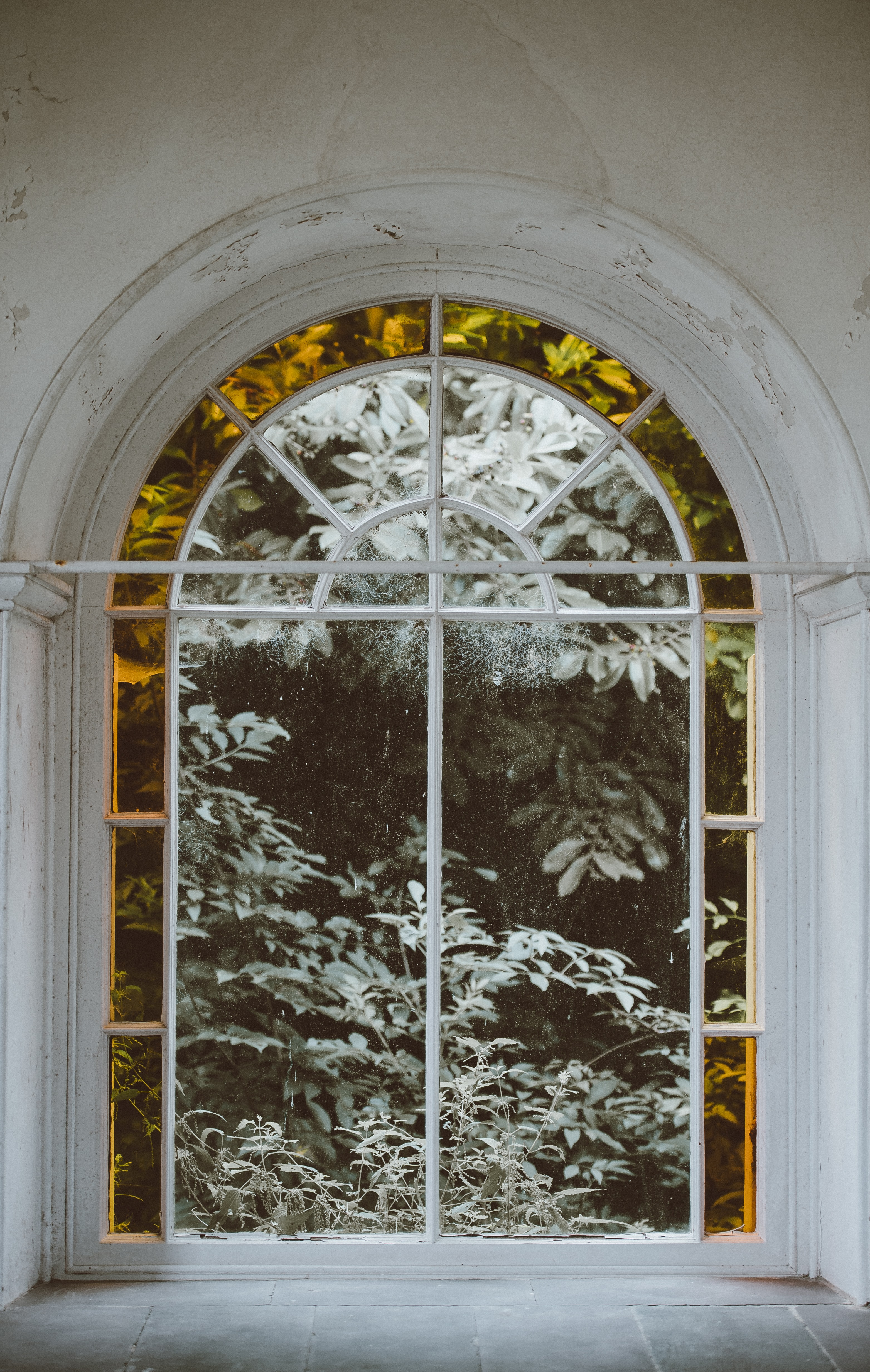 clear glass window with white frame