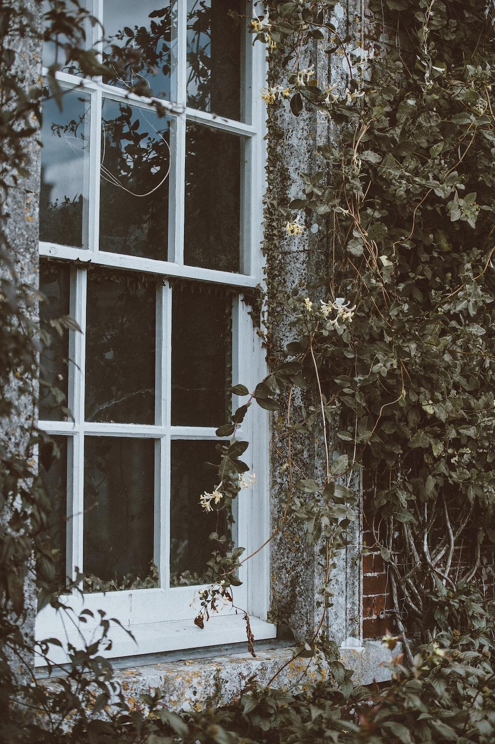 white framed glass window closed