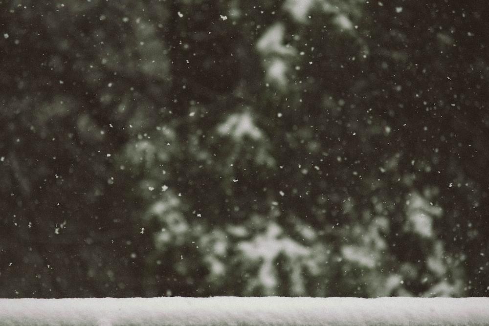 white snow flakes