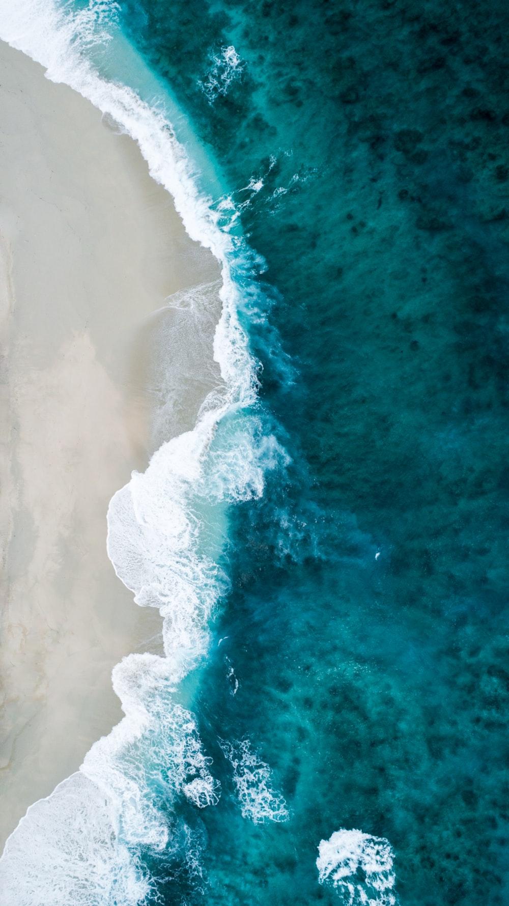 aerial photo of seashore