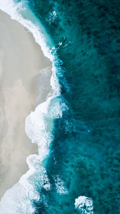 aerial photo of seashore