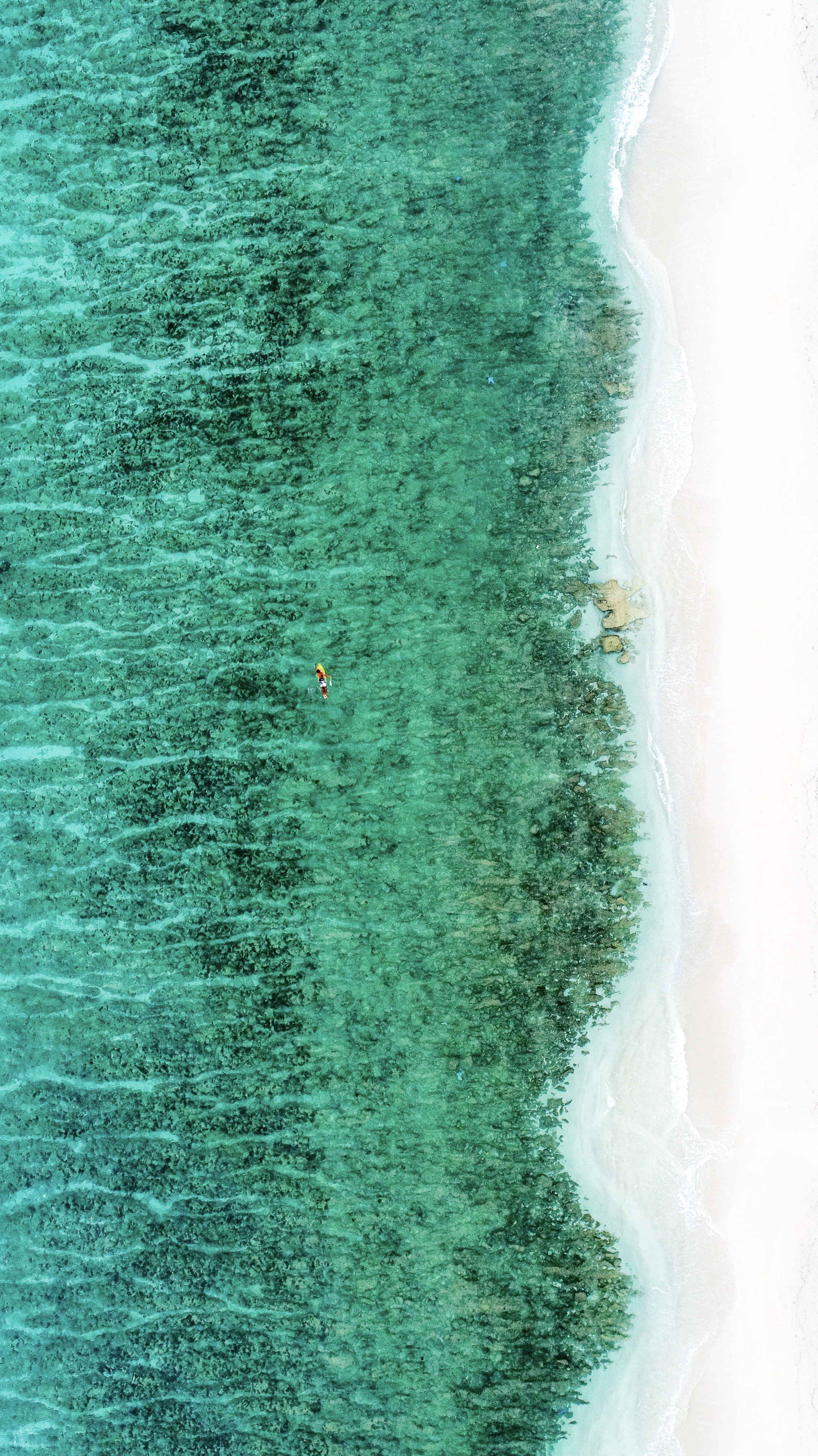 aerial view photography of ocean and shore
