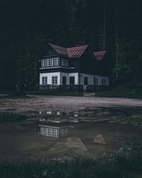 white and black wooden house in the middle of foresh