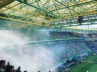 sports field stadium