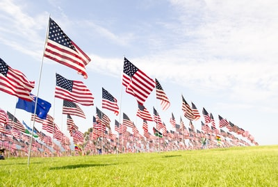 u.s.a flags on green grass field during daytime memorial day teams background