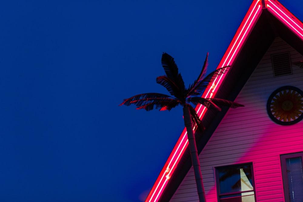 silhouette photo of coconut tree near house under blue sky