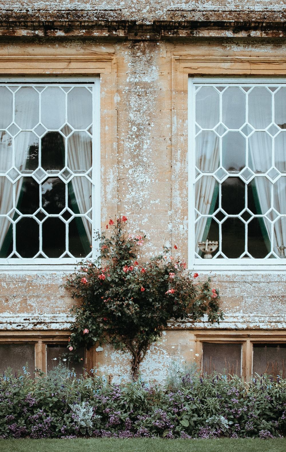 two white window frames