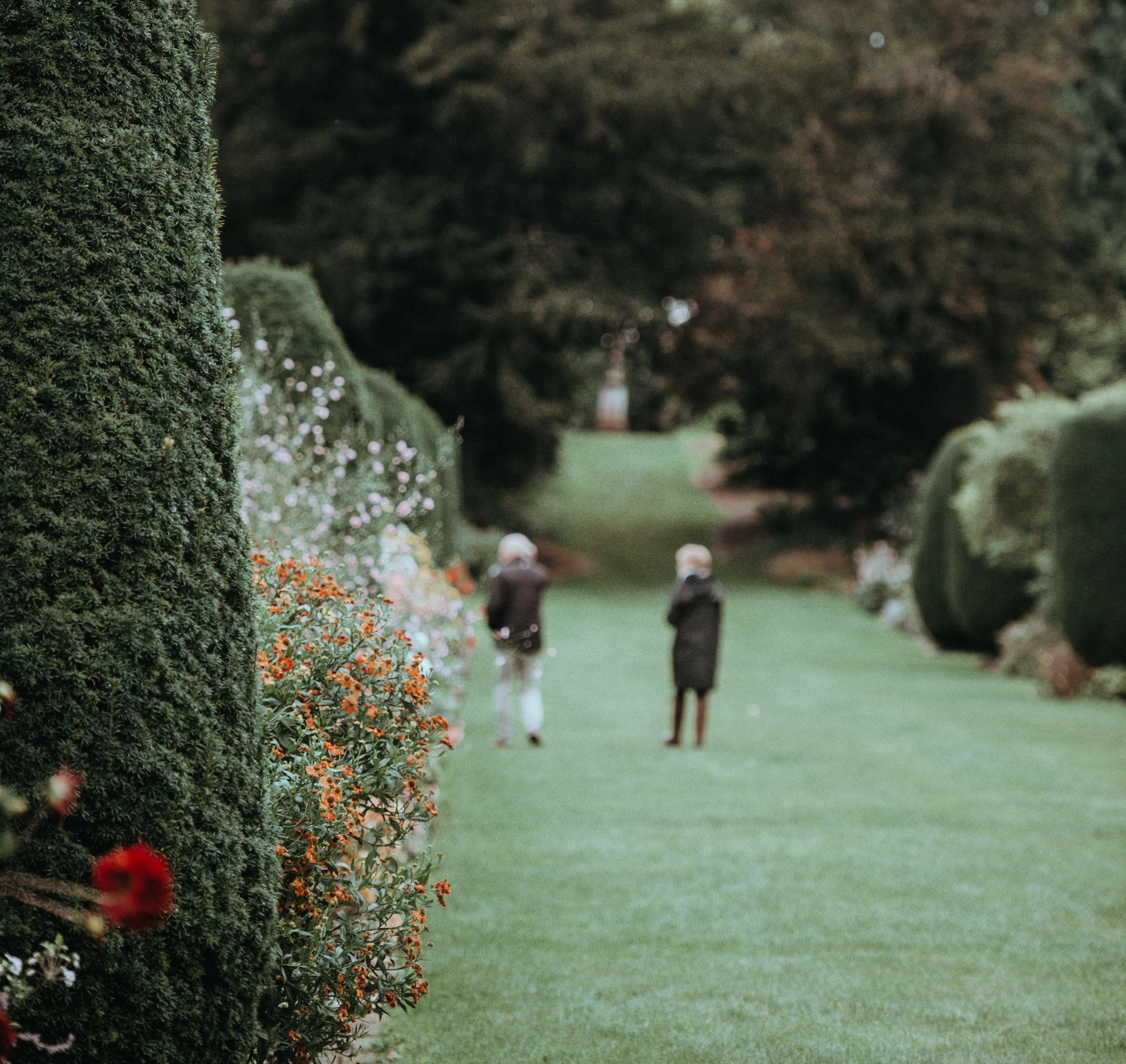 Jalan-jalan di taman yang hijau bisa membuat pikiran kita lebih fresh lho (dok. Unsplash)