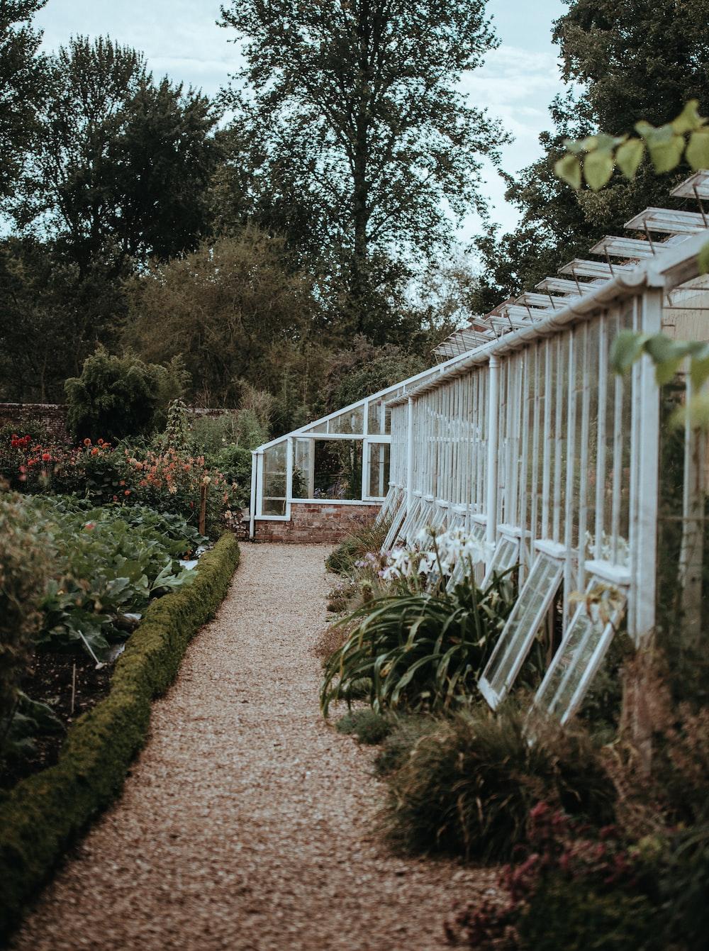 white green garden