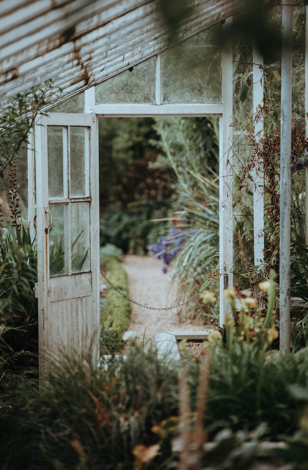 white metal greenhouse