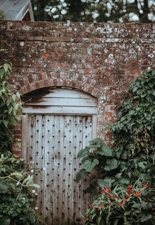 white wooden door beside green leaf