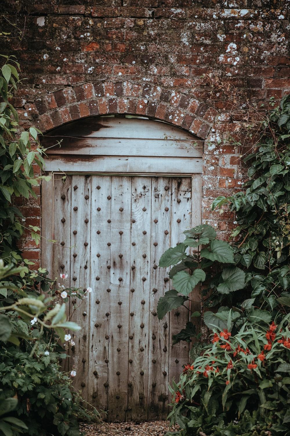 brown wooden door near green leaf plants at daytime