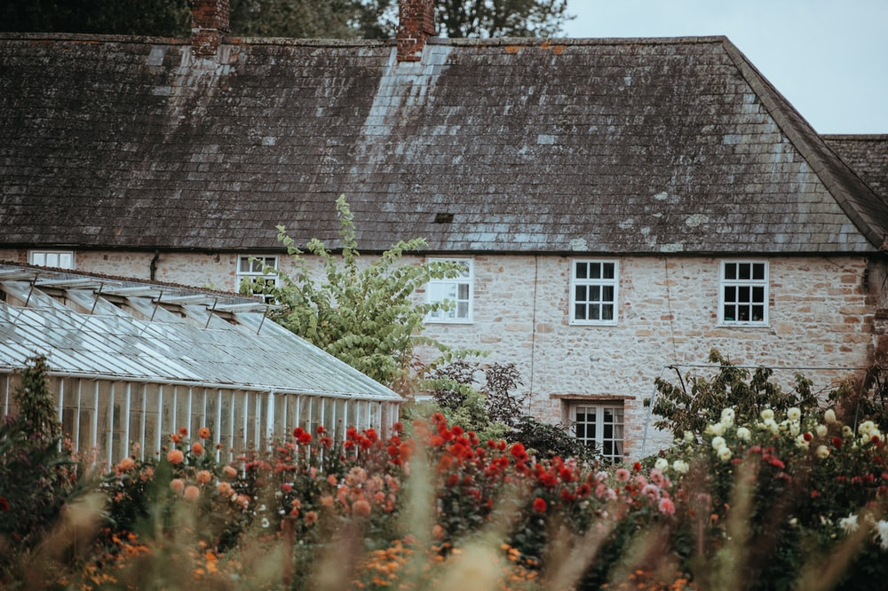 selective focus photography of house surrounded by flowers