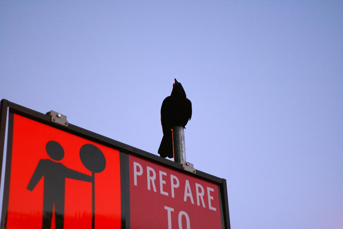 Prepare to... sign