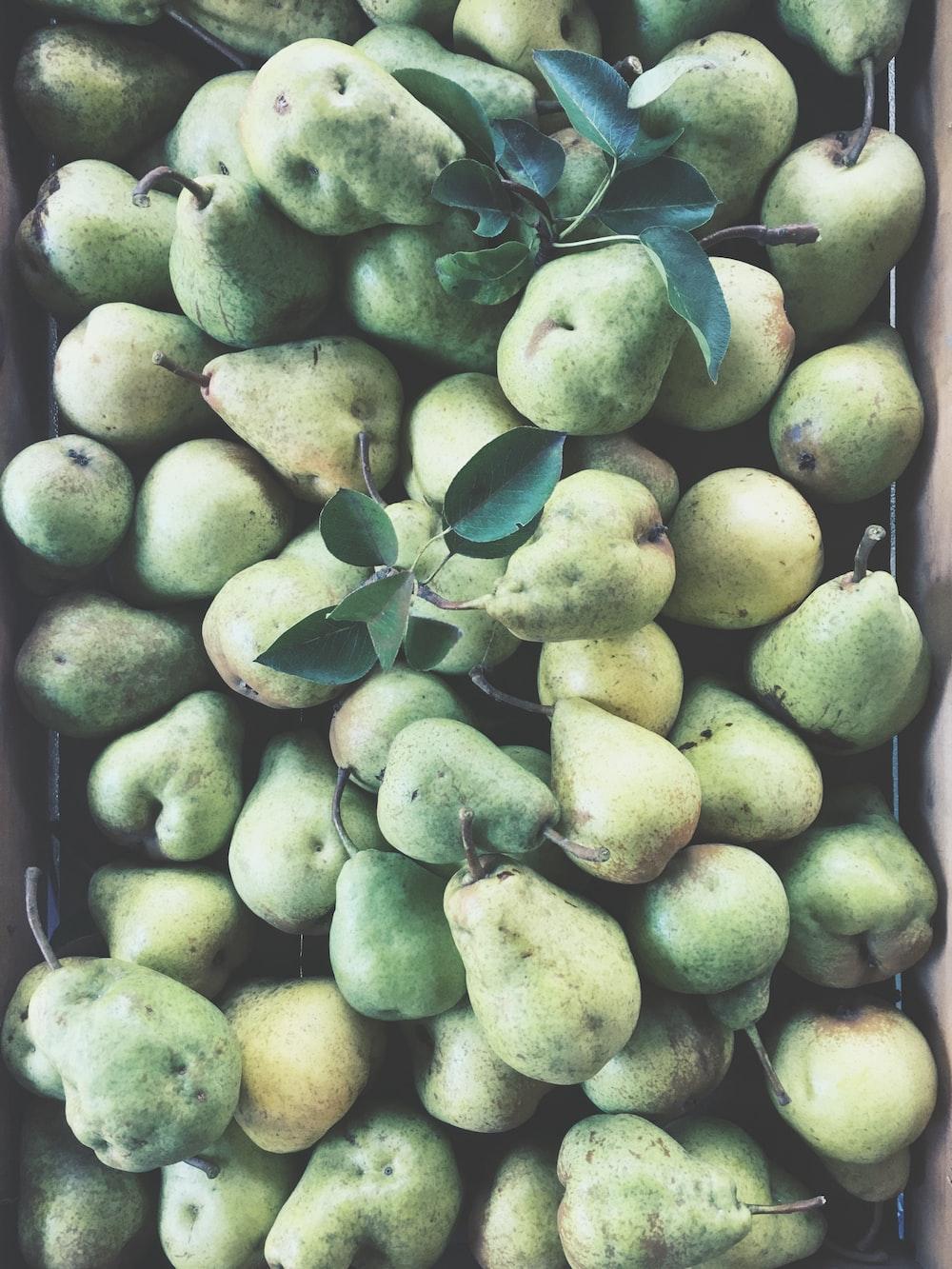 bunch of gourd fruits