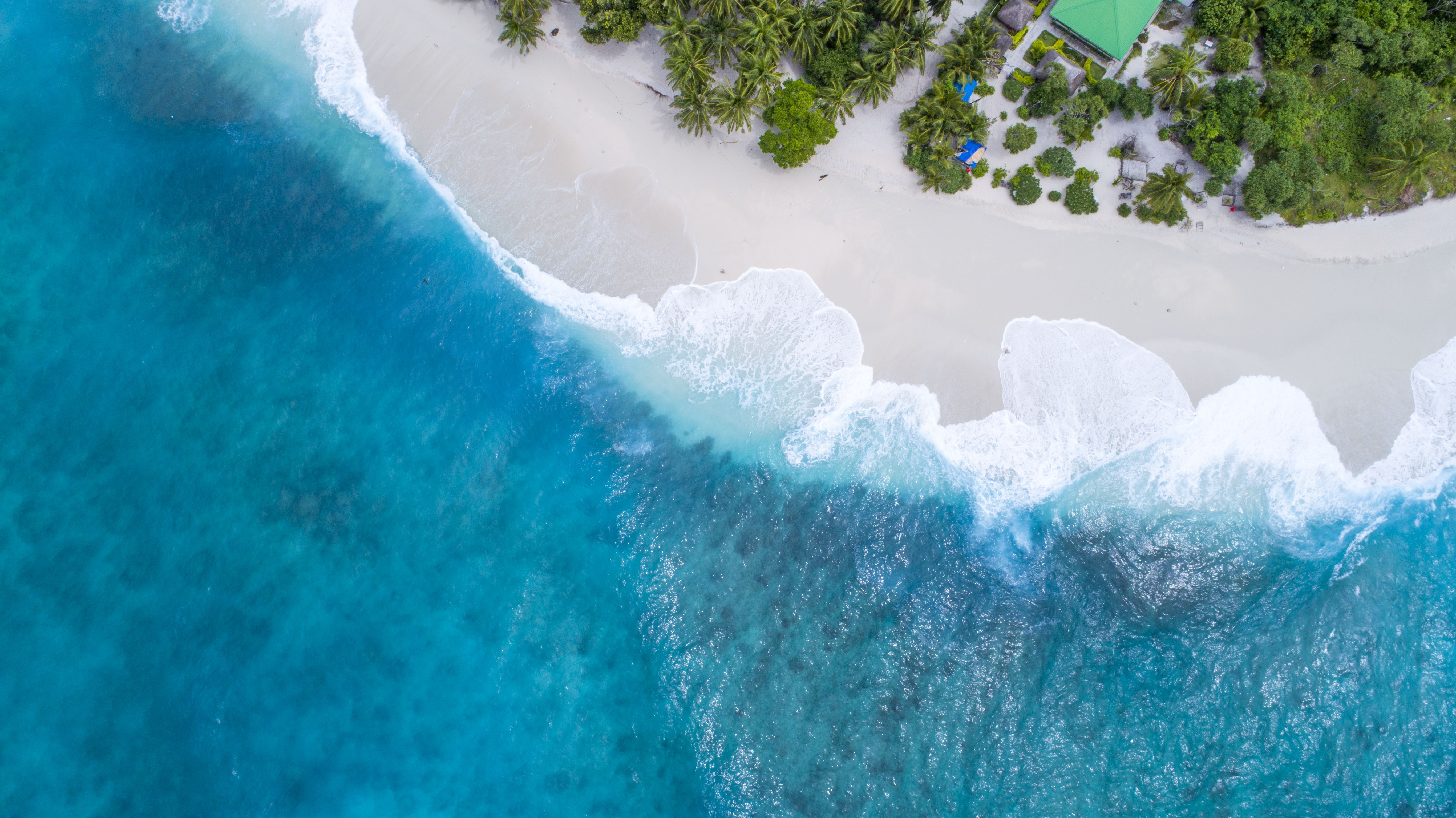 bird's eye-view photography beach