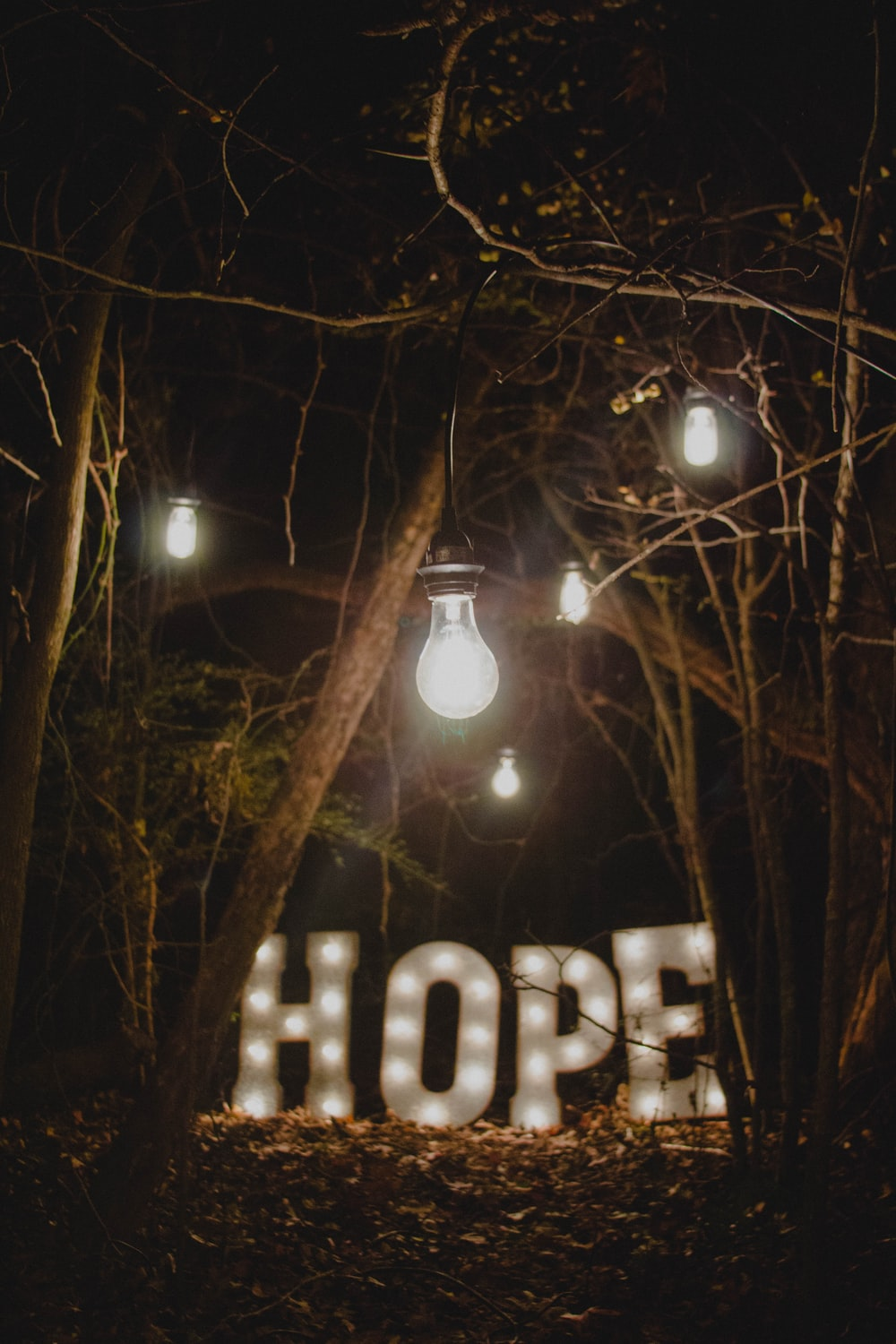hope marquee signage surrounded by trees