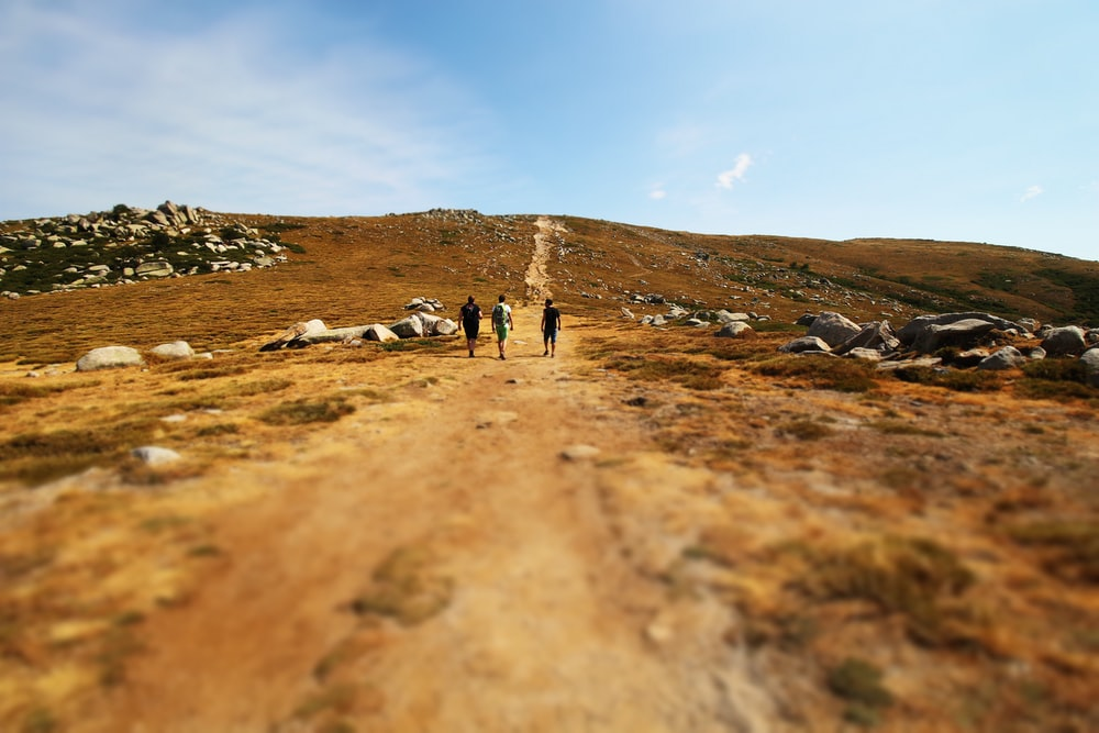 three men walking on valley during daytime