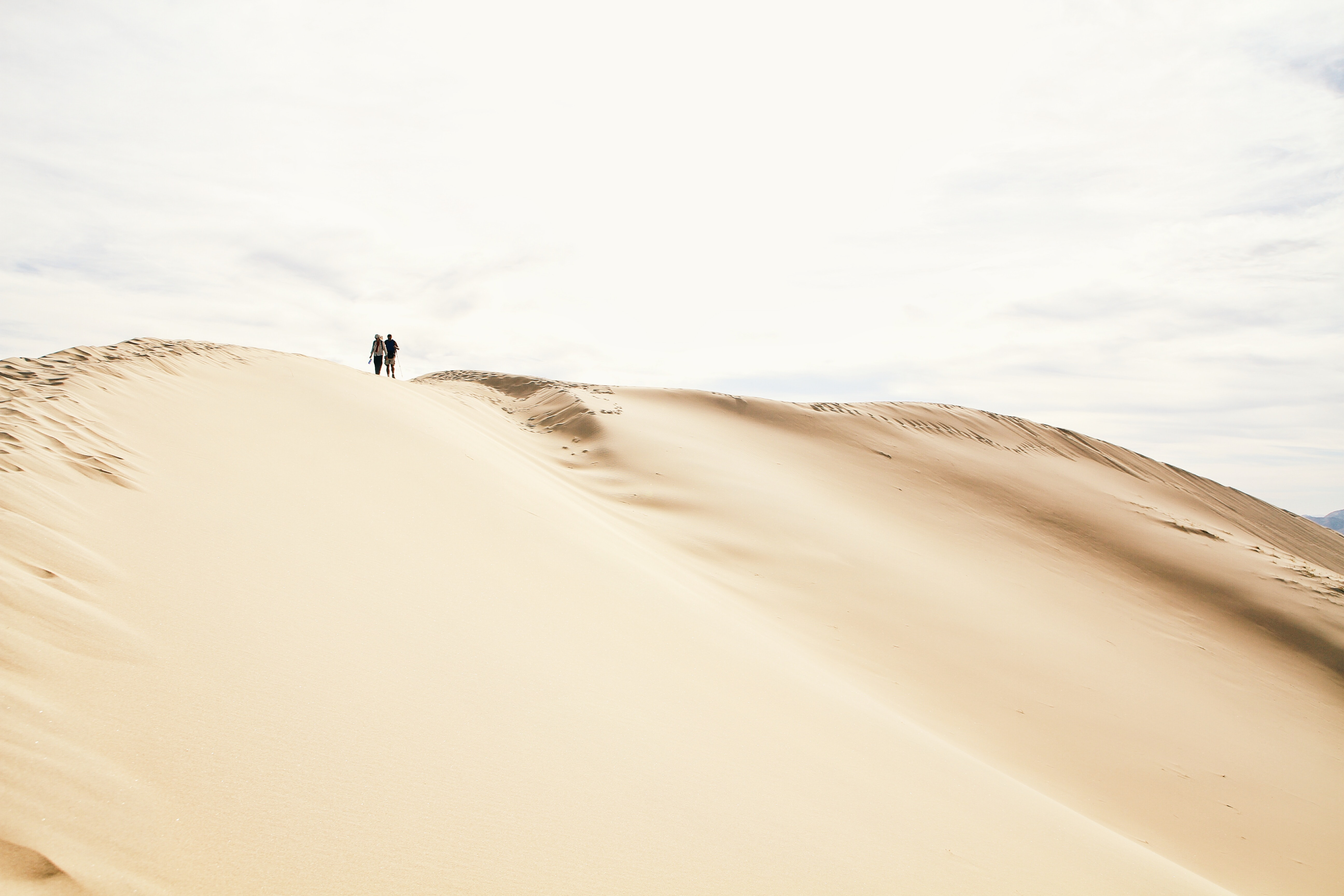 silouette of two people standing on sand under clear sky